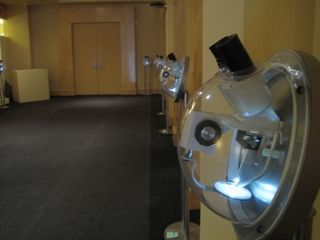 Willard Wiggins microscopes at Nicole Gallery 2009