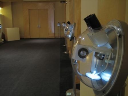 Willard Wiggins microscopes at Nicole Gallery 2009